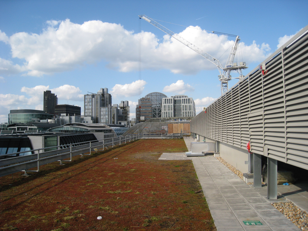 A Dry Meadow Green Roof In The Heart Of London Gic Projects