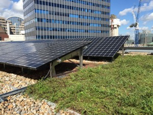 Sustainable Biosolar roof - Heart of the city