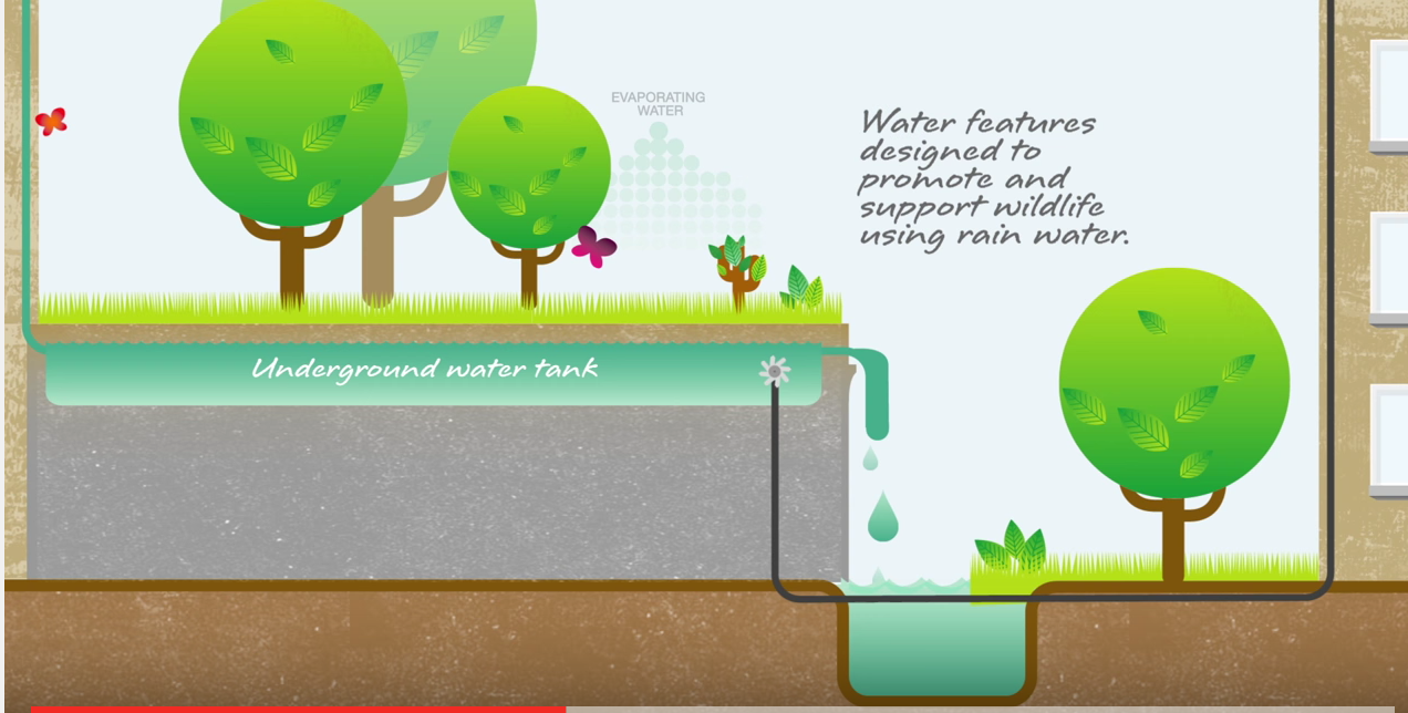 'Every raindrop counts' – green infrastructure in action