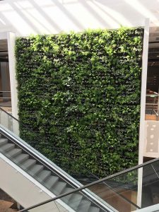 House of Fraser Green Wall