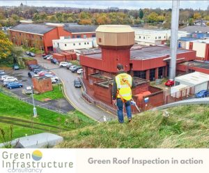 green roof inspections