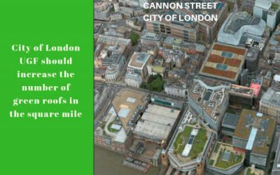 City of London adopts the urban greening policy | UGF