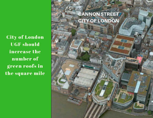 City of London adopts the urban greening policy   UGF