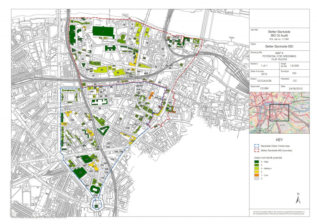 Team London Bridge and Better Bankside Green Infrastructure Audits (2013)