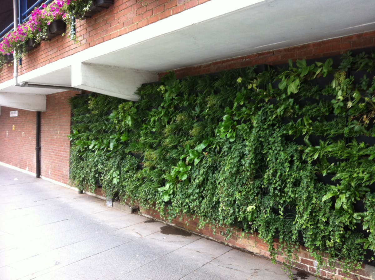 Green infrastructure consultancy services